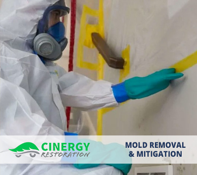Mold Removal and Mitigation Sunrise FL